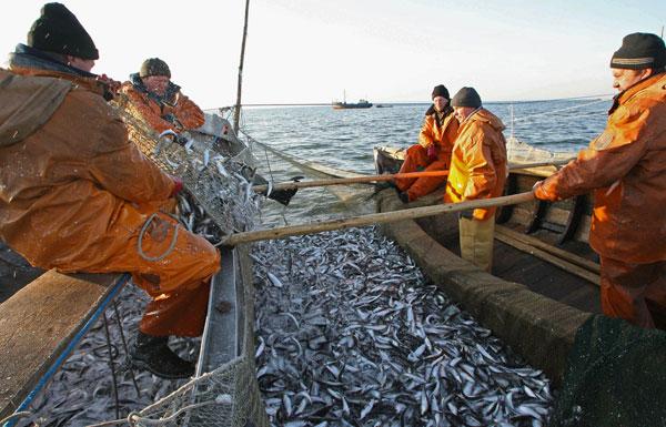 проект место для ловли рыбы