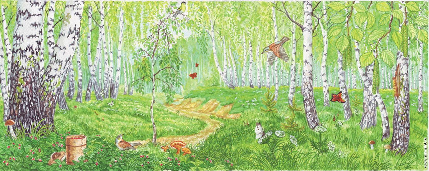 Лес летом рисованный