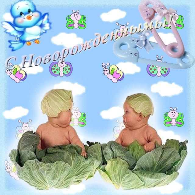 Поздравление с новорожденным с двойней