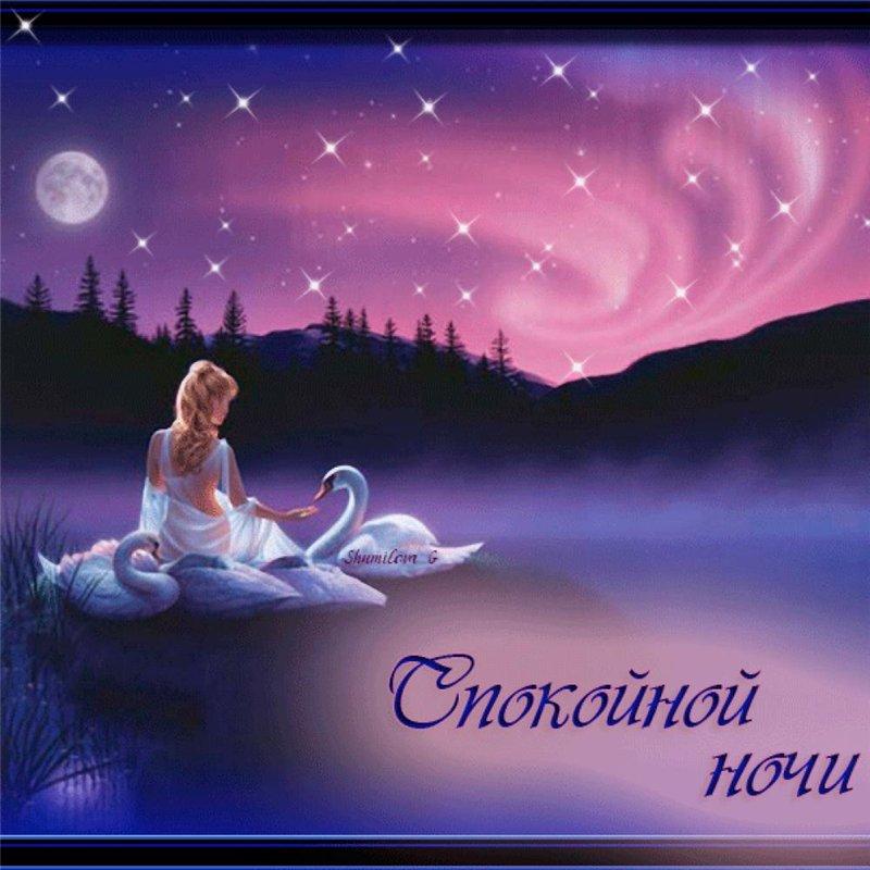 Красивая открытка с пожеланиями доброй ночи 52