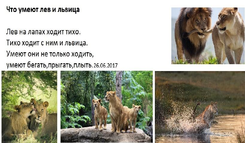 Поздравления для львов и львиц 172