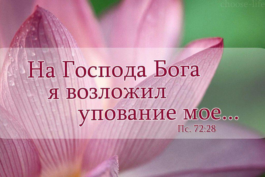 Христианские открытки про радость, плейкастами