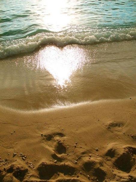 чём нем стихи о море песке солнце узнать