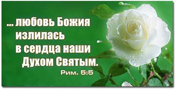 Поздравления в день святого духа