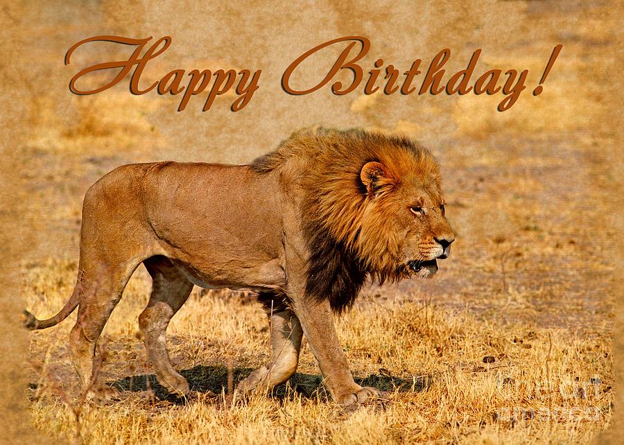 Картинки поздравления льва с днем рождения, днем рождения картинки