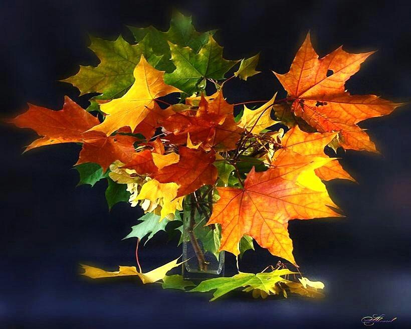 Открытки осень отправить