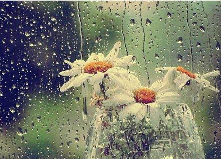 Картинки, открытки анимации дождь