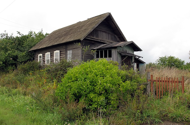 дешевый дом в деревне глушковский район животные