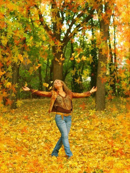 действия осенний день закружит листопадом стихи шерстяного