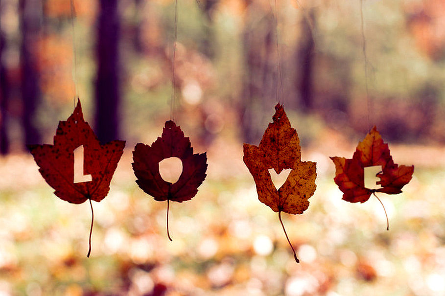 Fall in Love With Language  The Write Practice