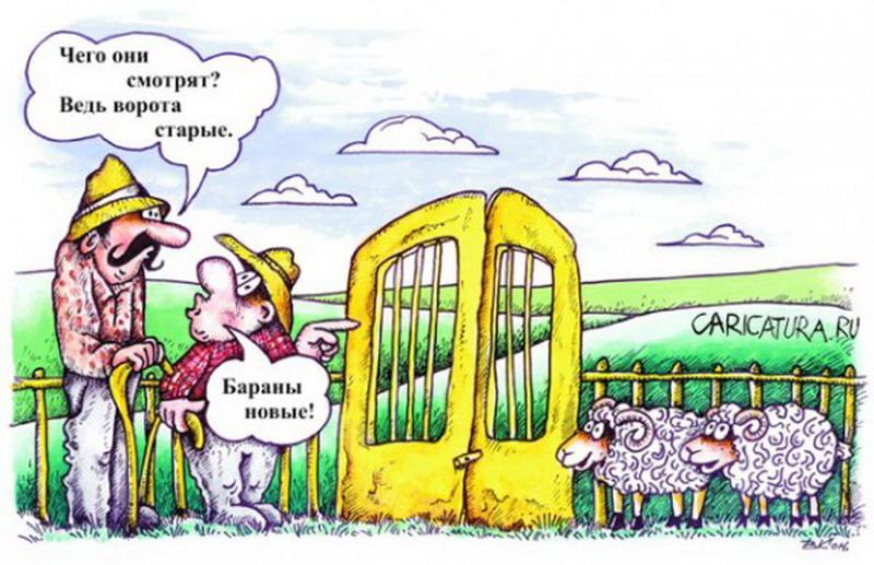 Анекдот: Вернемся к нашим баранам,— сказал профессор и…