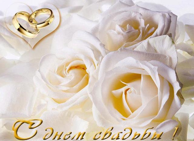 Поздравление свете и сергея со свадьбой