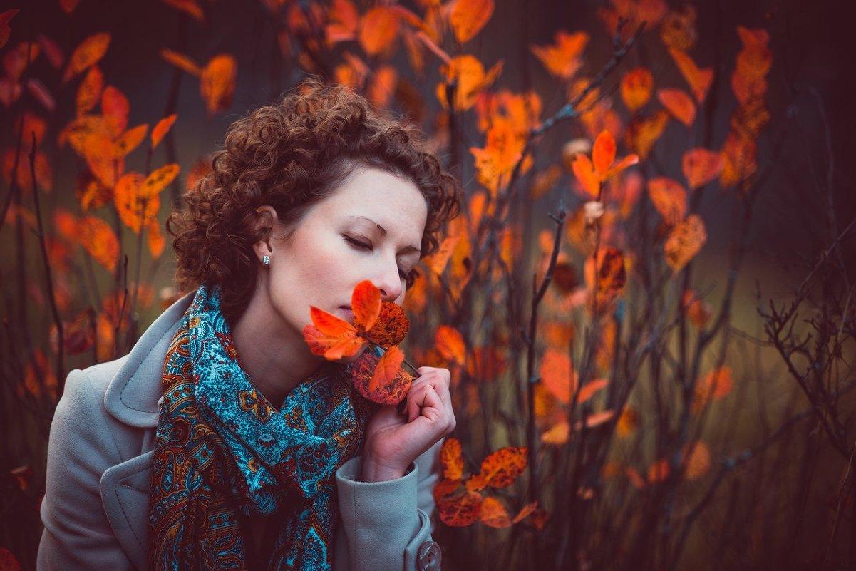 Картинки с прощай осень, картинки высокого качества