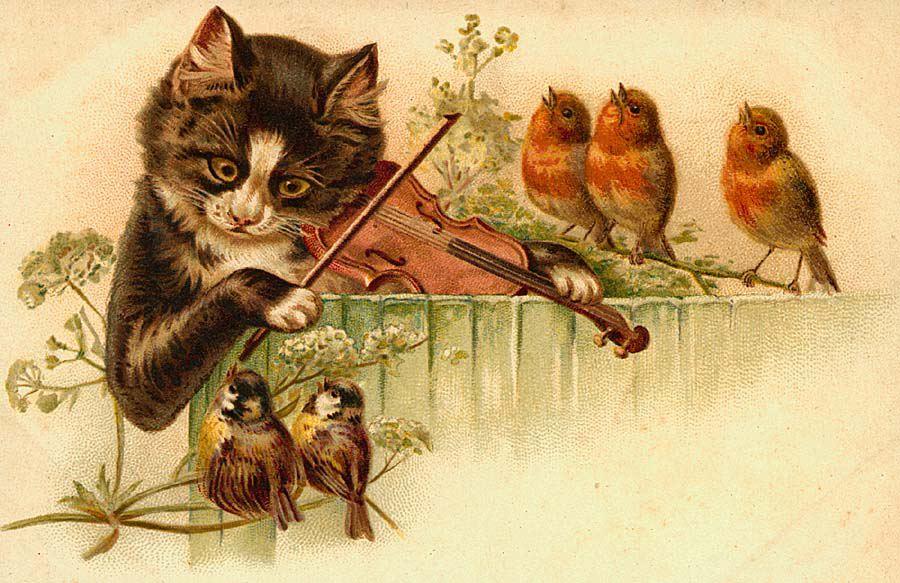 Для, старинные котики на открытках