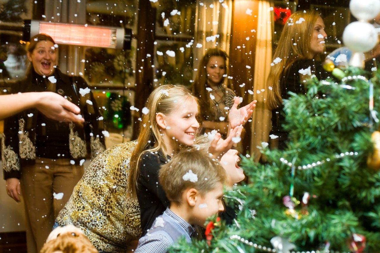 Сценарий нового года в кругу взрослых