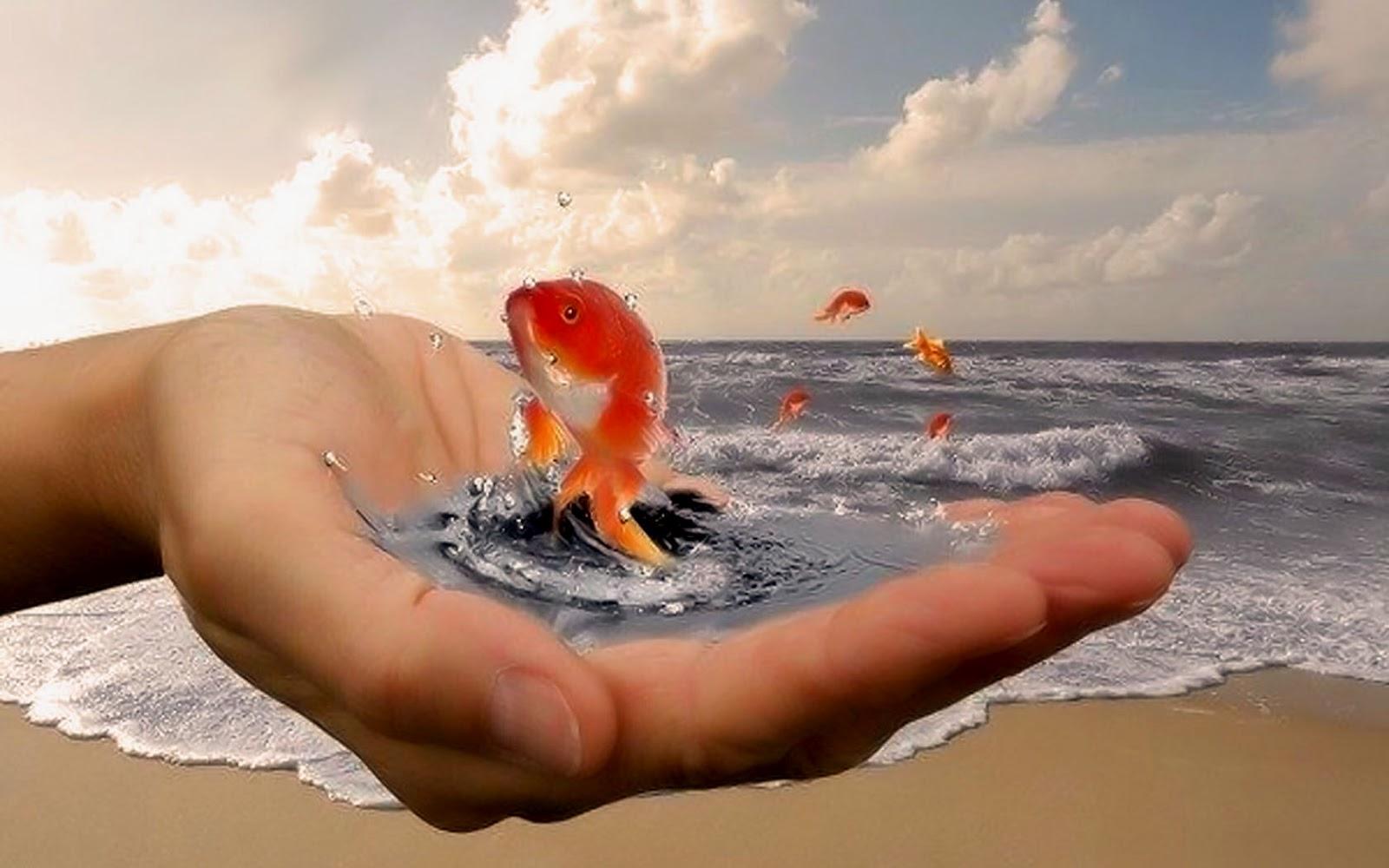 Поздравление молодожёнам с золотой рыбкой