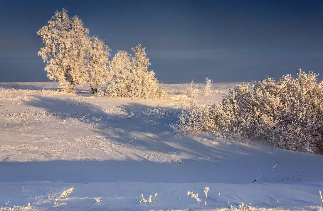 картинки на рабочий стол зимние степи