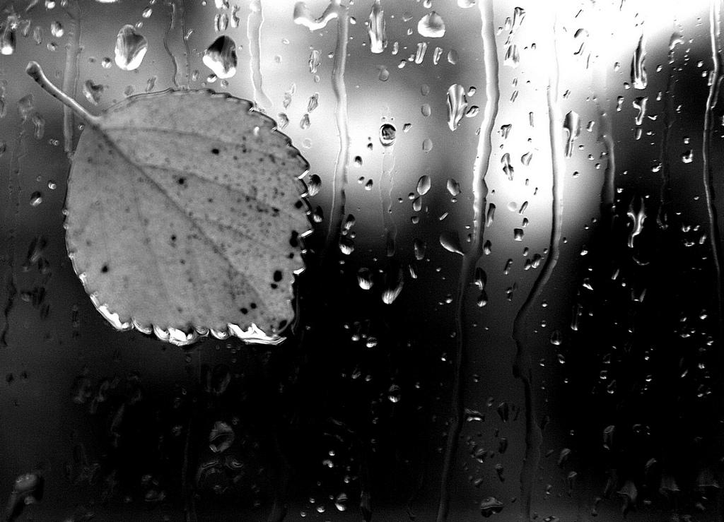 картинка дождя грусная как