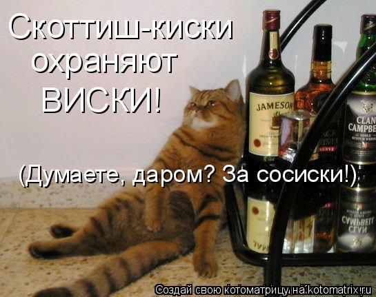Трахать киски виски видео мужа