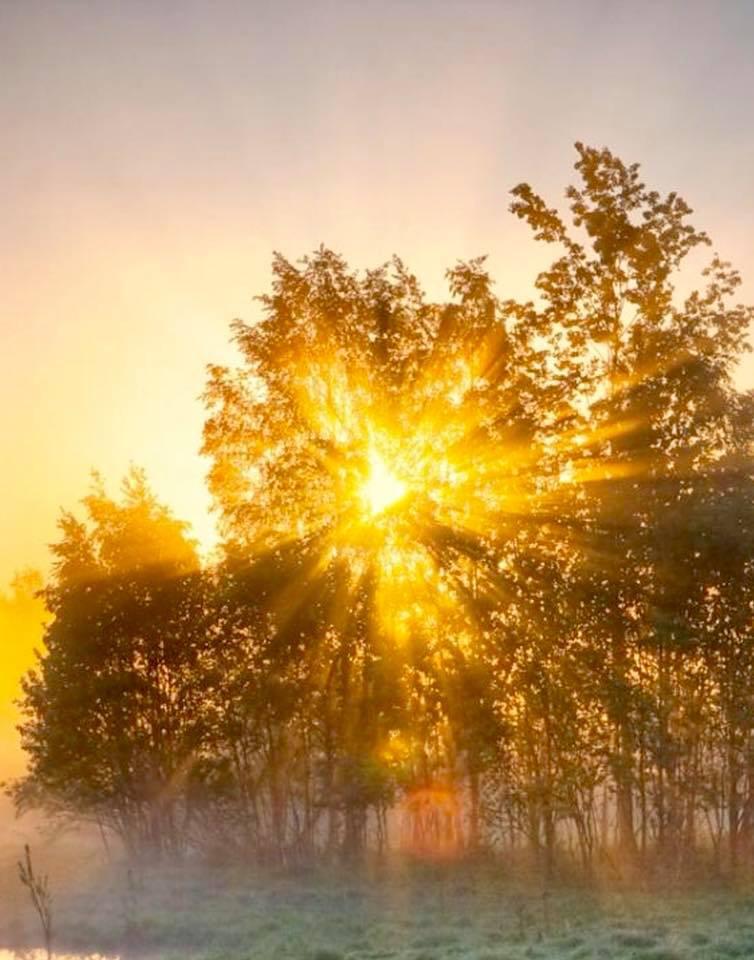 Днем рождения, картинки солнце встало доброе утро