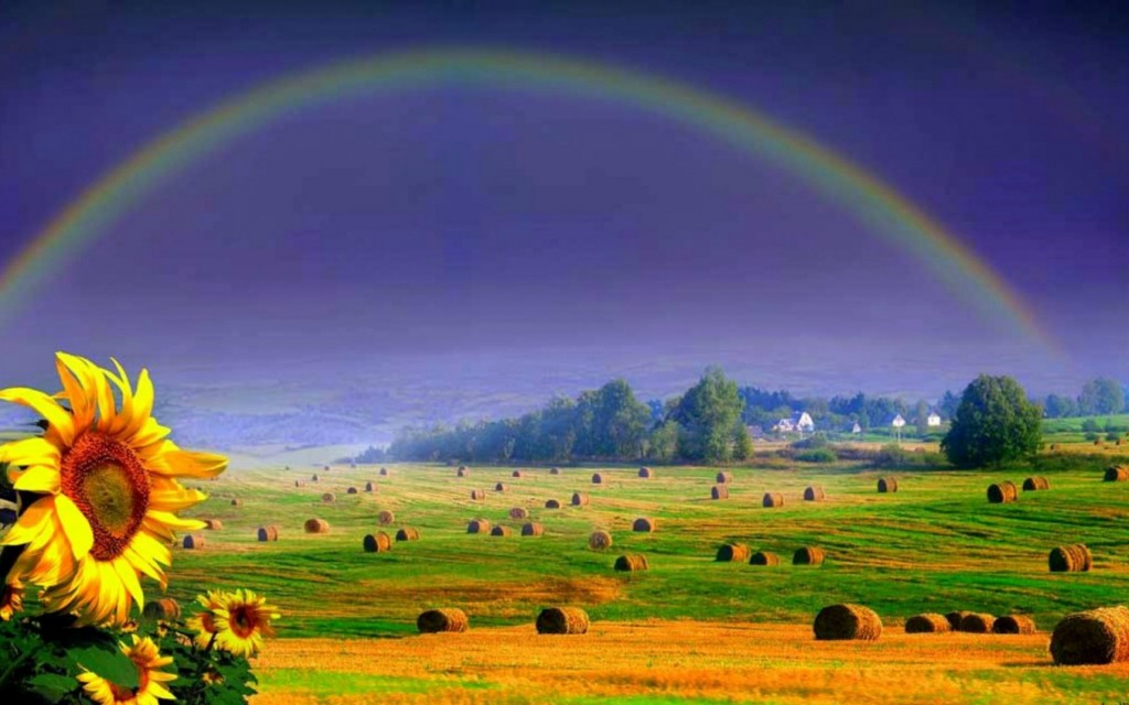 a beautiful rainbow Beautiful rainbow pictures rainbow photography is always beautiful, showing the perfect tune of colors.