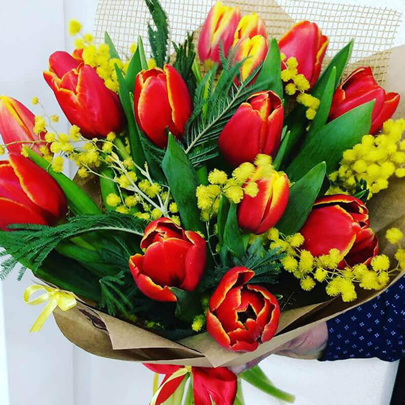 Собаки картинки, открытки с 8 марта тюльпанами и мимозой