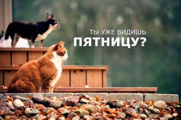 Завтра Пятница (Тимофей Черанёв) / Стихи.ру