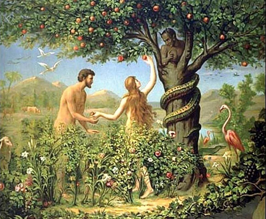 Картинки для детей адам и ева в раю или аду