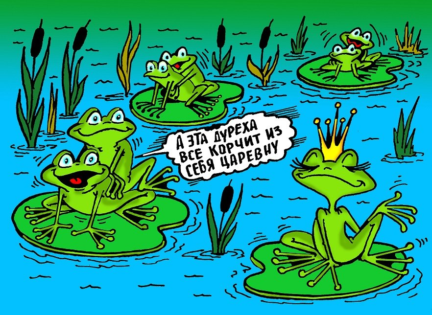Приколы про лягушку картинки
