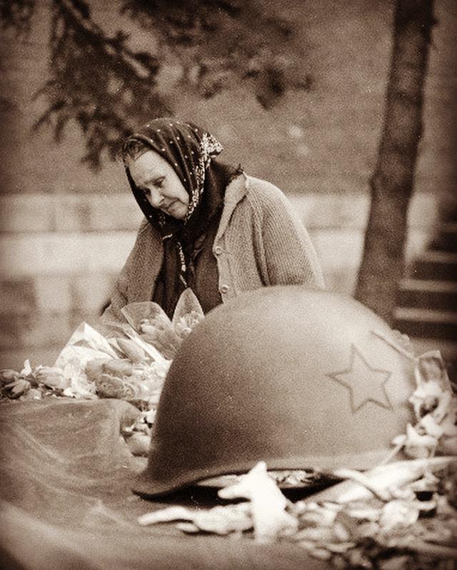 Картинки женщина мать и война