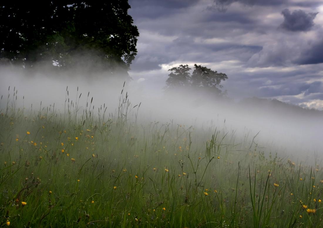 туман летом фото стоит нам начать