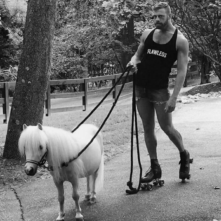 Сделать открытку, смешная картинка с принцем на белом коне