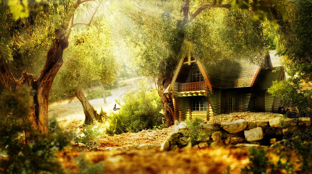 после дом на окраине леса картинки факультет принцесс принцев