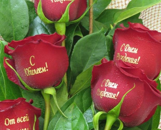 Картинки цветы с днем рождения с надписью, новогодние