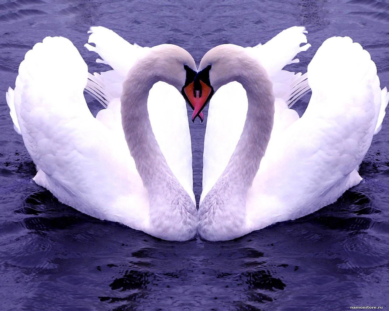 Кристина орбакайте — одна на двоих бессонница песни про любовь.