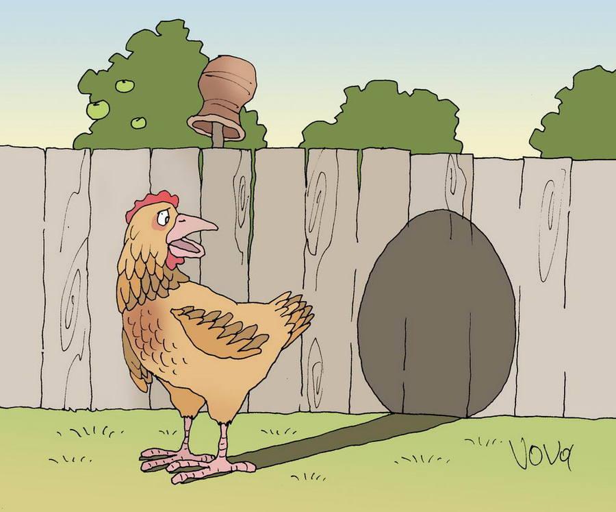 Днем, смешная картинка курица и яйцо