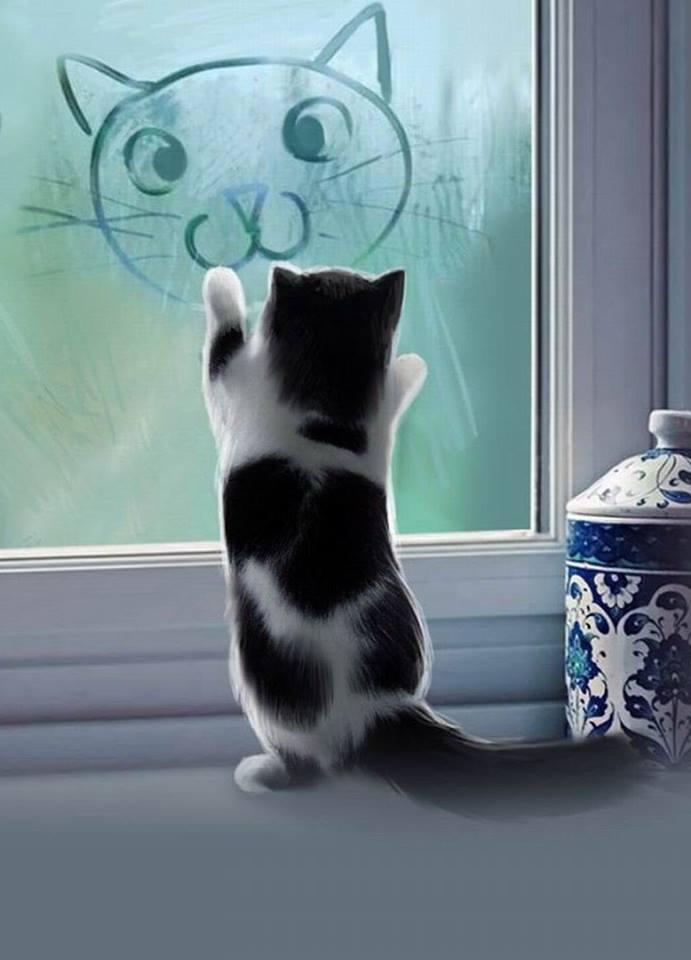 Смешариков, кот скучает открытка