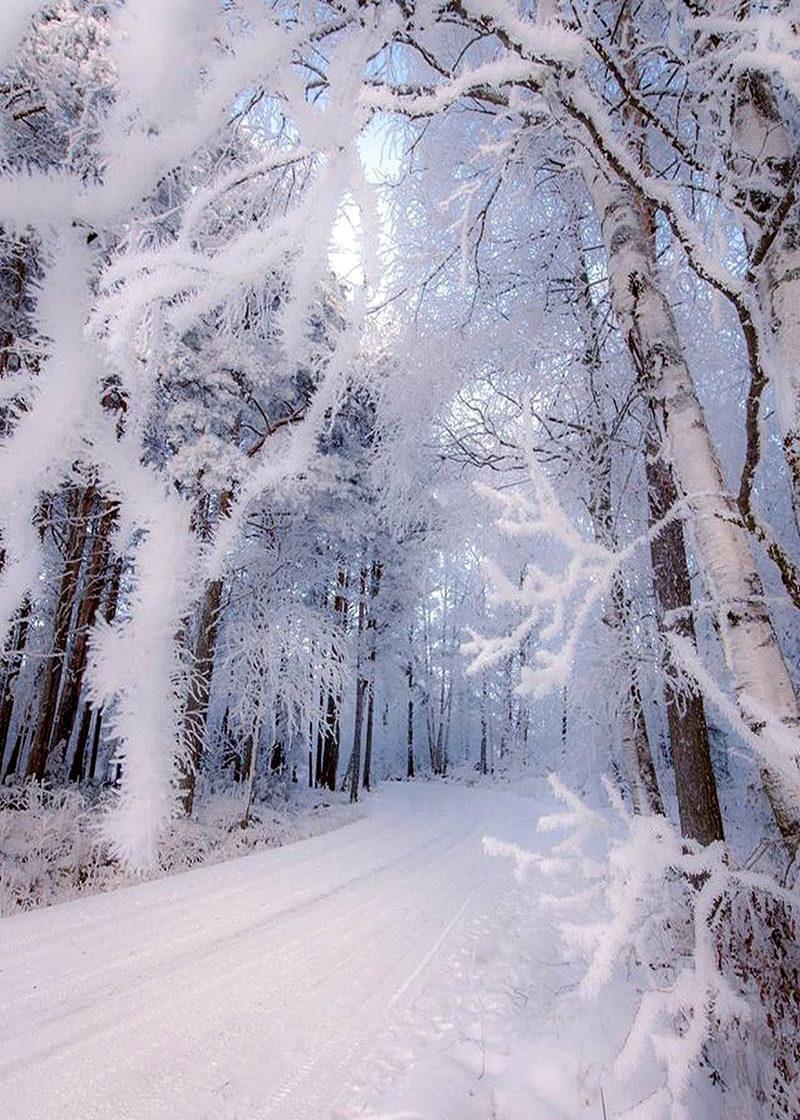 Открытка снег в россии