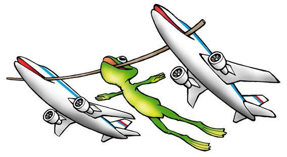 Картинка лягушки путешественницы смешная