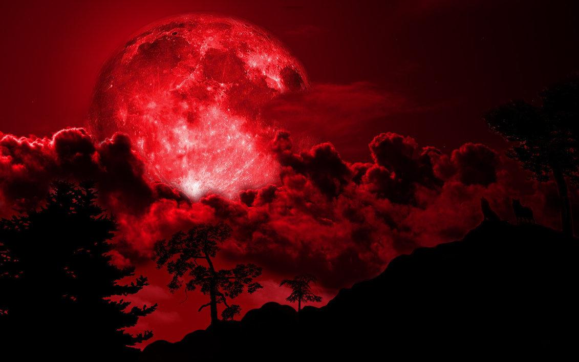 каким картинка кровавой ночи тех, кто видит