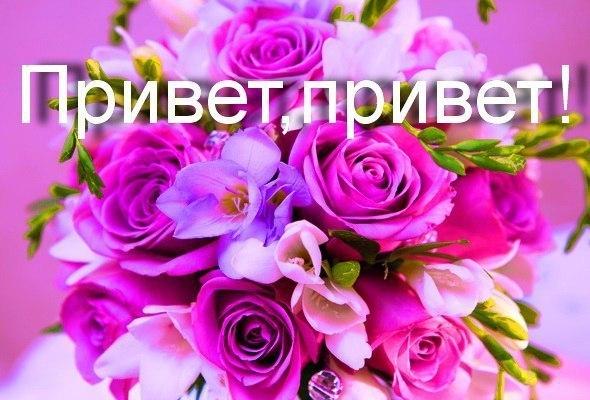 Открытку, картинки цветы привет