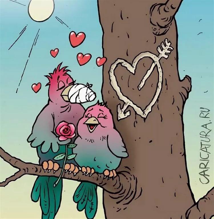 Днем рождения, картинки про любовь смешные из жизни