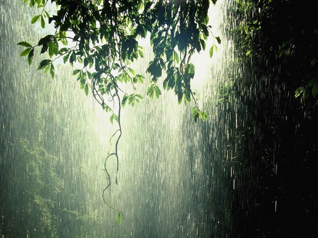 костюм ногайцев картинка красивая с дождиком посёлке