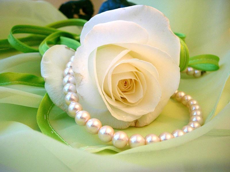Годовщиной свадьбы, картинки розы с жемчугом