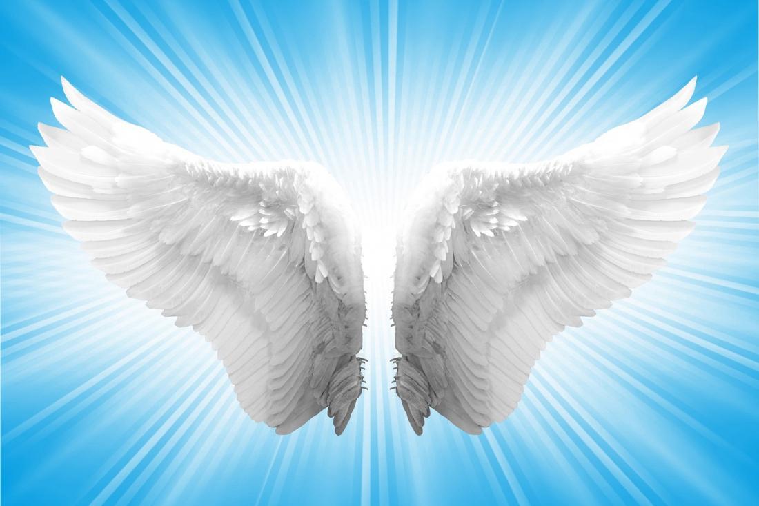 Картинки про крылья