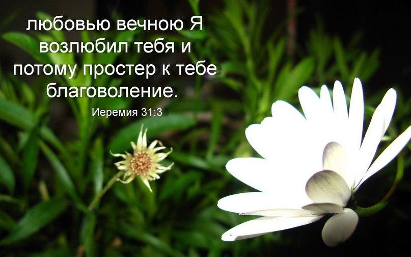 Любовь христианские картинки