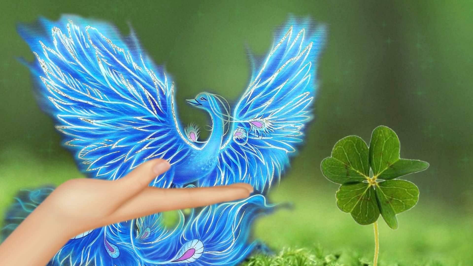Анимации, открытки синяя птица
