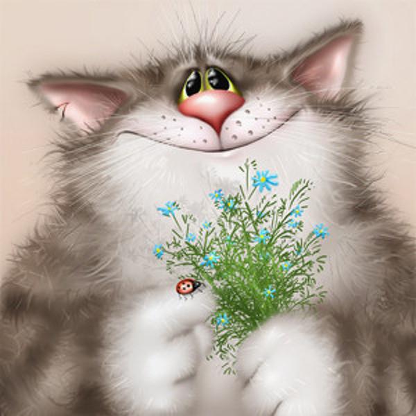 Открытки, открытка с котами поздравляю