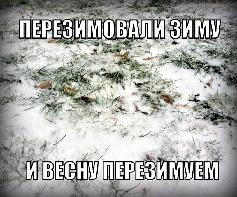 Картинках, прикольная картинка снег в апреле