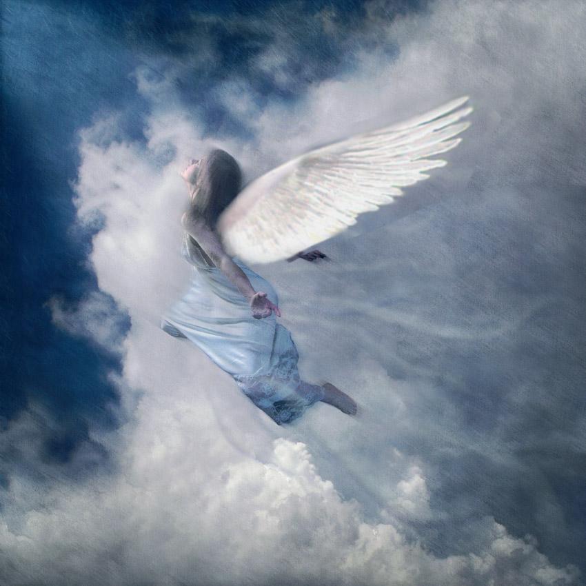 фото картинки ангелы упали с небес особняке нарышкиных